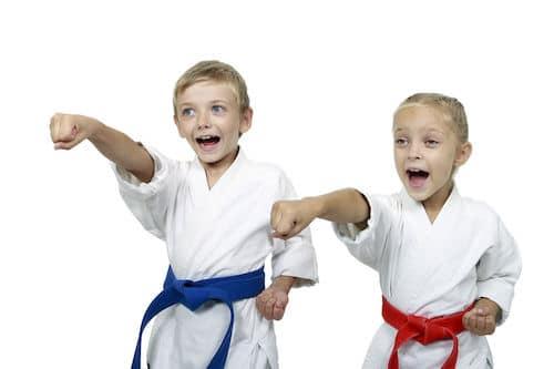Baby Karaté et arts martiaux à gap